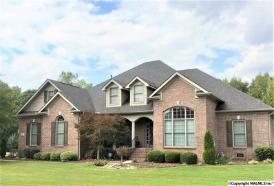 519 Thoreau Spring Court, Madison, AL 35758 - #: 1103683
