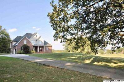 484 Beard Road, Guntersville, AL 35976 - #: 1103698