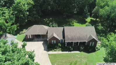 2999 Indian Creek Road, Pulaski, TN 38478 - #: 1103854