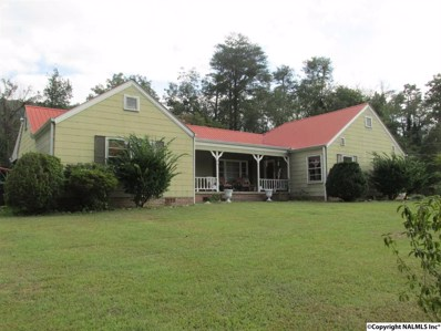 3611 Godfrey Avenue, Fort Payne, AL 35967 - #: 1104177
