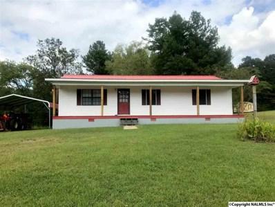 235 County Road 114, Gaylesville, AL 35973 - #: 1104259