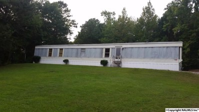 1600 Green Valley Road, Glencoe, AL 35905 - #: 1104303