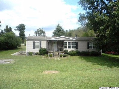 3010 Brown Street, Altoona, AL 35952 - #: 1104324