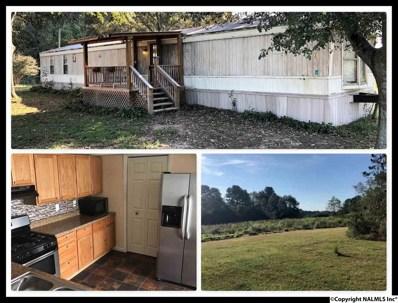 909 Nixon Chapel Douglas Road, Horton, AL 35980 - #: 1104391