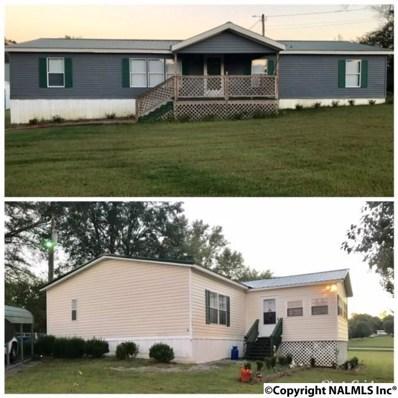 6005 Nixon Chapel Road, Horton, AL 35980 - #: 1104444