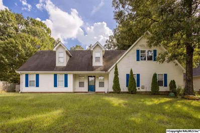 114 Hunters Hill Trail, Toney, AL 35773 - #: 1104467