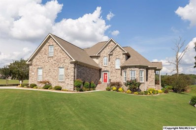 279 Summit Lakes Drive, Athens, AL 35613 - #: 1104548