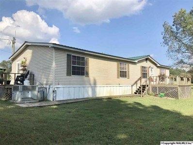 300 Berry Road, Guntersville, AL 35976 - #: 1104578