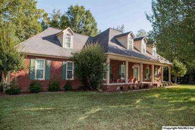 143 Mathews Lane, New Hope, AL 35760 - #: 1104767