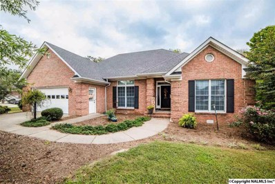 245 Wellsbrook Circle, Fayetteville, TN 37334 - #: 1105084