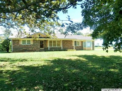 107 Mooneyham Road, Fayetteville, AL 37334 - #: 1105139