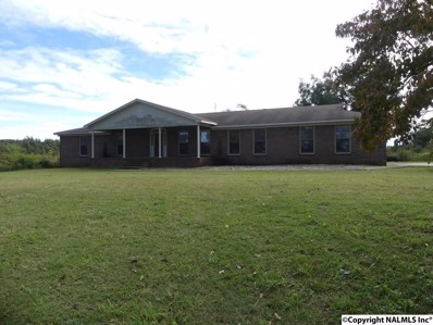 451 Old Solitude Road, Guntersville, AL 35976 - #: 1105308