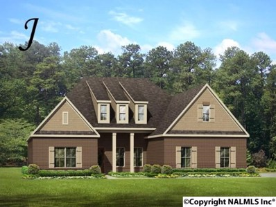 211 Winterbranch Road, Madison, AL 35756 - #: 1105316