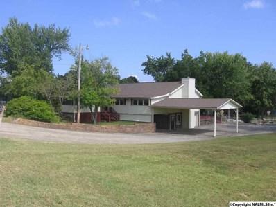 6436 Teal Circle, Guntersville, AL 35976 - #: 1105355