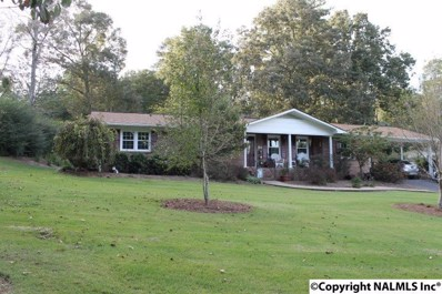 2904 Forest Avenue, Fort Payne, AL 35967 - #: 1105405