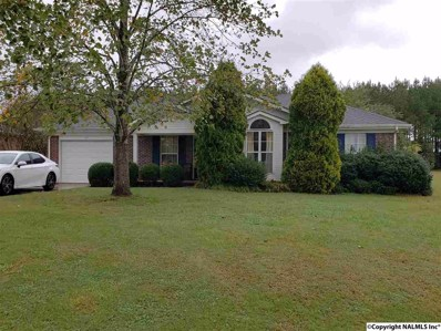117 Elkwood Road, Hazel Green, AL 35750 - #: 1105436