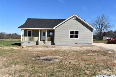 2246 County Road 505, Fort Payne, AL 35968 - #: 1105497