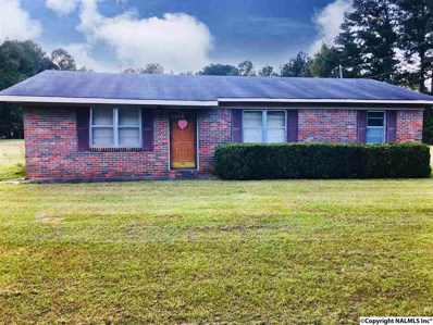 1024 Kirby Bridge Road, Danville, AL 35619 - #: 1105547