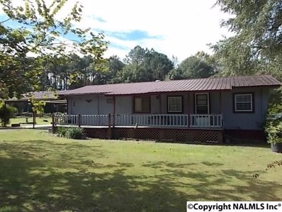 146 Holiday Shores Road, Scottsboro, AL 35769 - #: 1105577