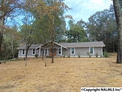 1039 Snodgrass Road, Scottsboro, AL 35769 - #: 1105583