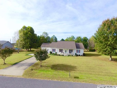 143 County Road 121, Section, AL 35771 - #: 1105708