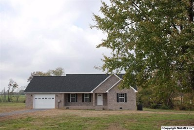 449 County Road 523, Fyffe, AL 35971 - #: 1106125