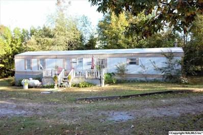 660 County Road 205, Centre, AL 35960 - #: 1106213