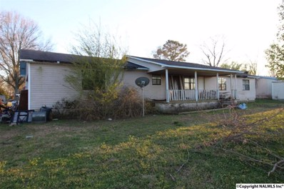 2827 Section Line Road, Albertville, AL 35950 - #: 1106328