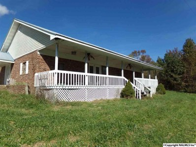 660 County Road 588, Fort Payne, AL 35967 - #: 1106351