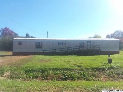 815 County Road 141, Flat Rock, AL 35966 - #: 1106380