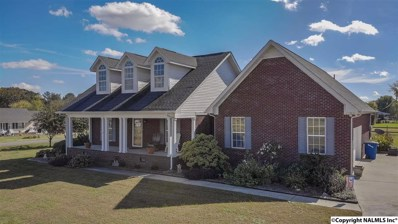 23 Meadows Drive, Rainsville, AL 35986 - #: 1106520