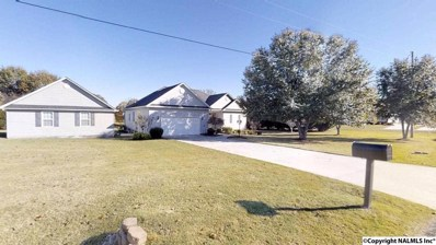 20 Lake Ridge Lane, Guntersville, AL 35976 - #: 1106551