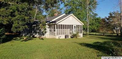 1660 Lokey Street, Leesburg, AL 35983 - #: 1106611