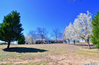 5380 Mountain Pass Road, Southside, AL 35907 - #: 1106677
