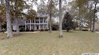 1795 Panorama Way, Guntersville, AL 35976 - #: 1106688