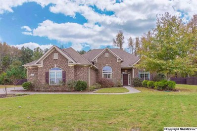 110 Mystic Pines Court, Harvest, AL 35749 - #: 1106701