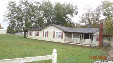 1130 Son Johnson Road, Boaz, AL 35956 - #: 1106890