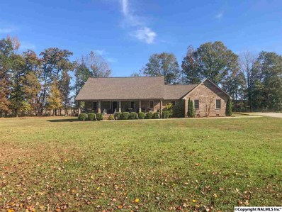 25864 New Bethel Road, Elkmont, AL 35620 - #: 1106934