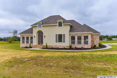 10 Oak Ridge Lane, Hartselle, AL 35640 - #: 1106977