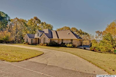 450 Bell Point Road, Laceys Spring, AL 35754 - #: 1107038