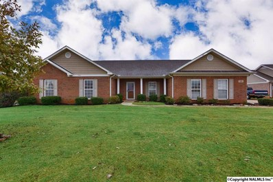 111 Cool Creek Road, Hazel Green, AL 35750 - #: 1107081