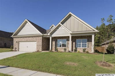 102 Settlesbridge Court, Madison, AL 35756 - #: 1107103