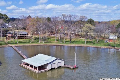 1840 Skyline Shores Drive, Scottsboro, AL 35768 - #: 1107282
