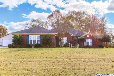230 Blackwater Drive, Harvest, AL 35749 - #: 1107334