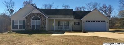 1725 County Road 166, Leesburg, AL 35983 - #: 1107720