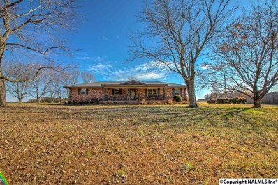 25092 Hays Mill Road, Elkmont, AL 35620 - #: 1107805