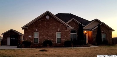 116 Evergreenview Drive, Hazel Green, AL 35750 - #: 1107998