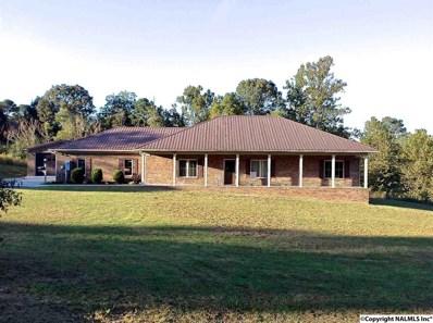 3819 County Road 1725, Holly Pond, AL 35083 - #: 1108272