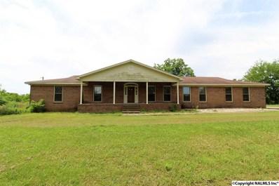 450 Old Solitude Road, Guntersville, AL 35976 - #: 1108534