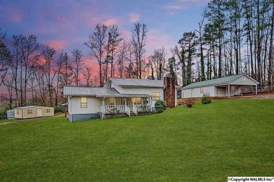 185 Pine Hill Circle, Union Grove, AL 35175 - #: 1108685